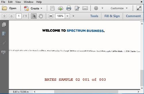 Vdocs pdf bates stamping software bates numbering pdf pdf bates stamp vdocs bates stamper preview malvernweather Image collections